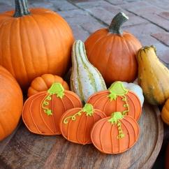 Fall Pumpkin Shaped Sugar Cookies