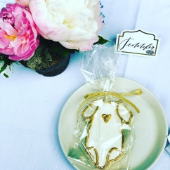 Onesie Cookies with Royal Icing, Packed in Our Compostable Clear Bags and Raffia Ribbon
