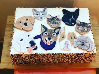 Pet Lover's Cake