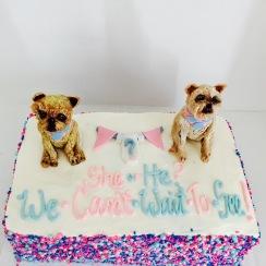 Gender Reveal Cake with Custom Edible Topperws